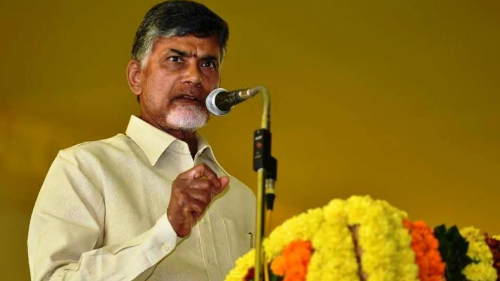 'Wait till Party's Decision': Chandrababu